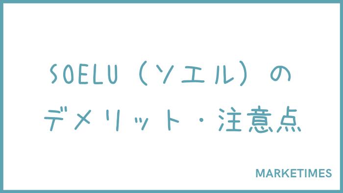 SOELU(ソエル)のデメリット・注意点